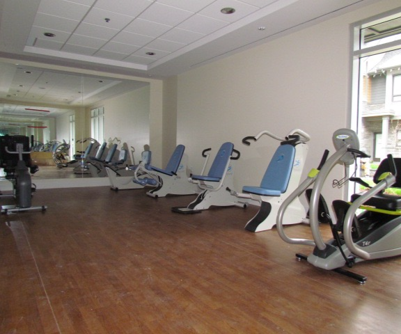hydraulic fitness equipment assisted living