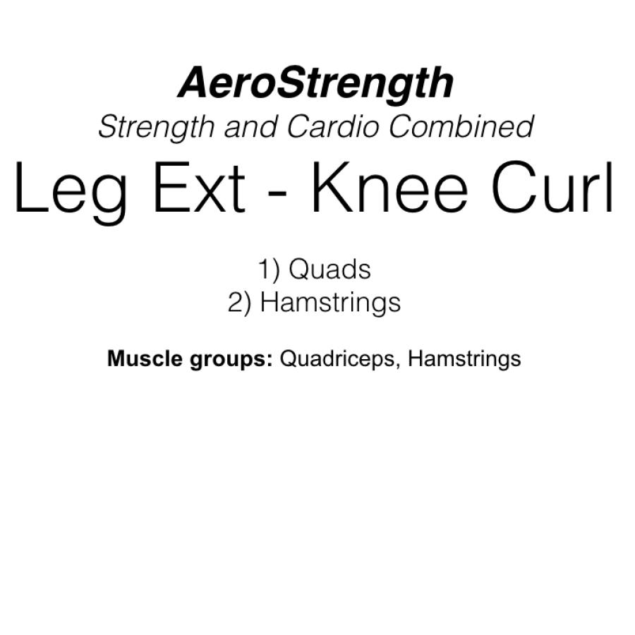 Double Leg Extension Machine - Knee Curl Machine